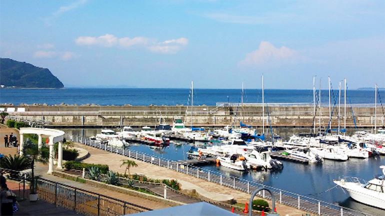 【静岡県】漁師町伊東の道の駅「伊東マリンタウン」は海鮮丼にうなぎに美味しいものがたくさんあるぞ