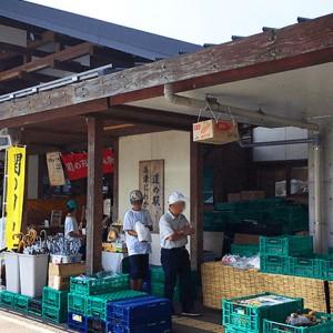 【岐阜】うだつの街並みを堪能!「道の駅 美濃にわか茶屋」ではレンタサイクルと郷土料理が楽しめる!