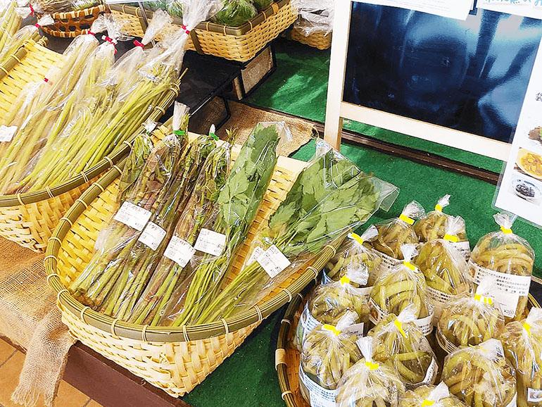 道の駅たかの 山菜