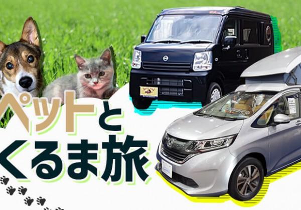 ペットと自由に旅をするにはキャンピングカーが最適!レンタルキャンピングカーでもお試しできる!