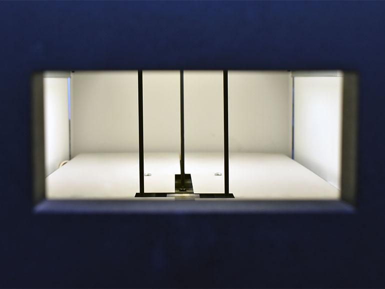 コヤマドライビングスクール 深視力測定