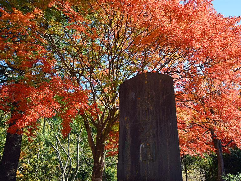 楽山公園 石碑と紅葉