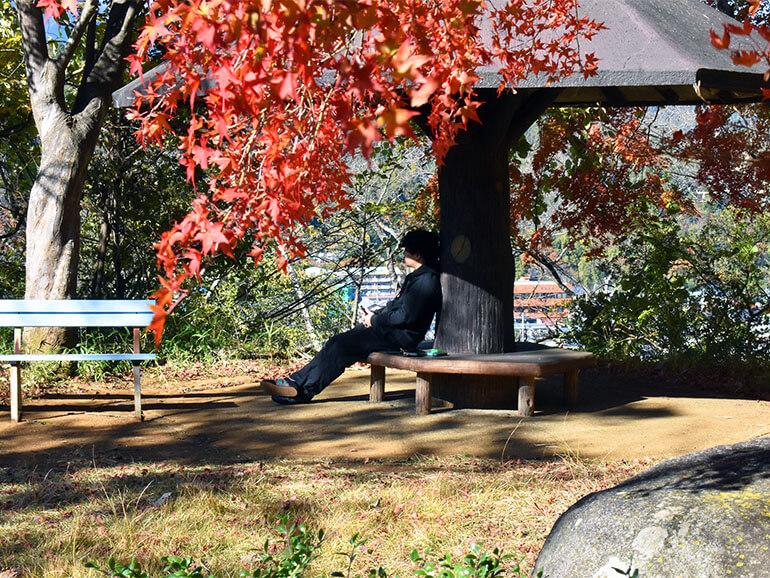 楽山公園 ベンチ