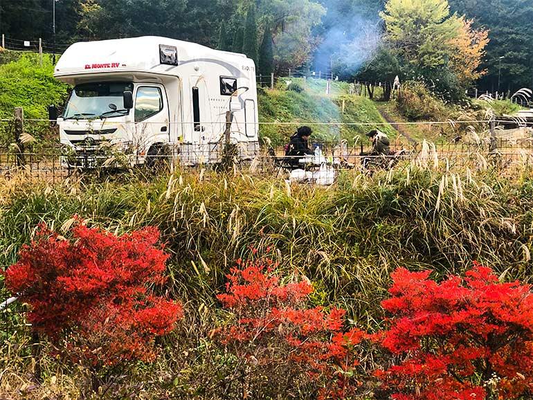 キャンプ場 朝の風景