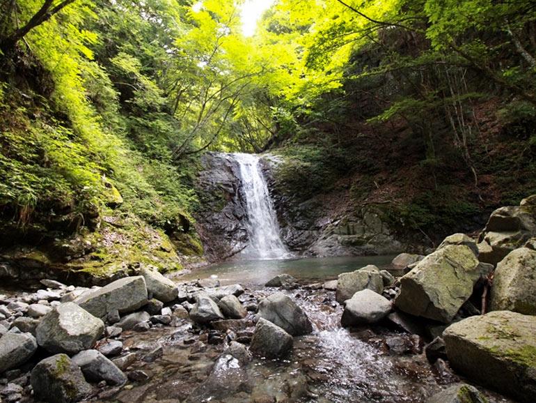 西丹沢大滝キャンプ場