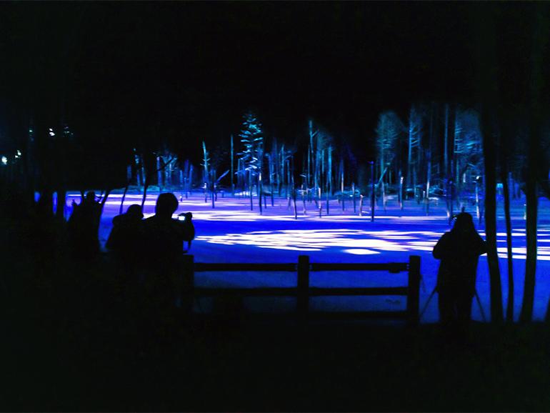 美瑛 青い池 撮影スポット