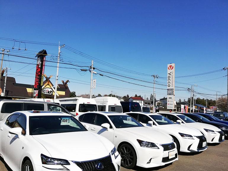 Car Sales&Rental yacco2