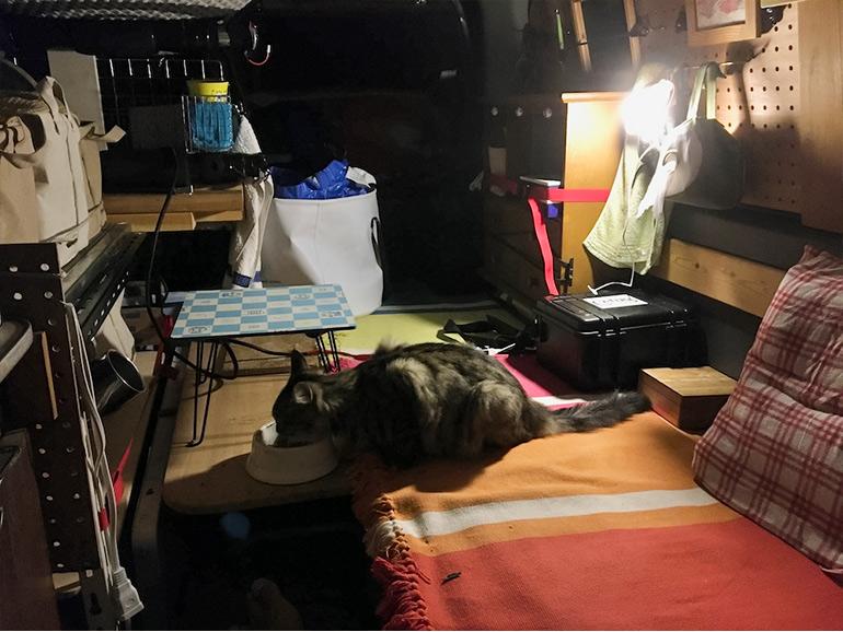 キャラバンに取り付けられた棚とベッド