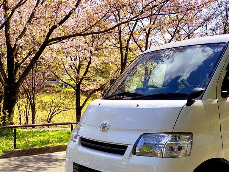 アルトピアーノと桜