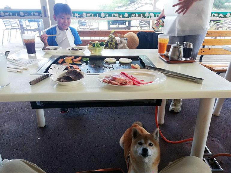 愛犬と食事を楽しむ様子