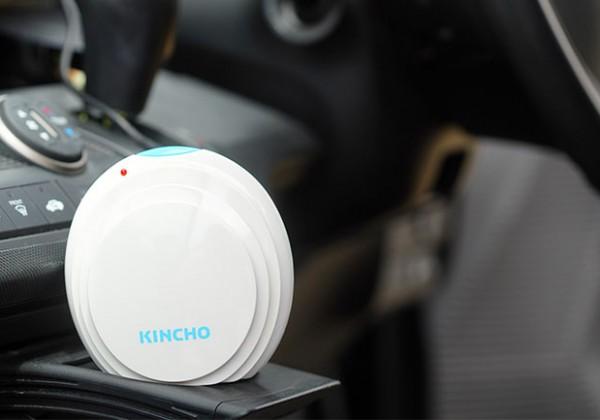 車内の防虫対策
