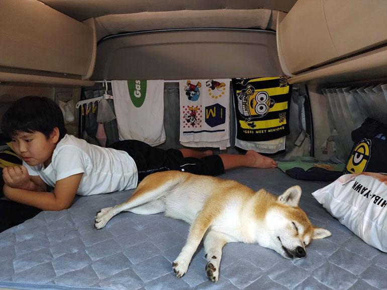車内でくつろぐ子どもと犬