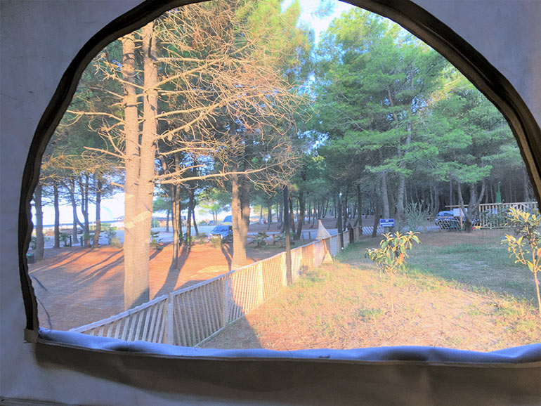 ジッパー式の窓