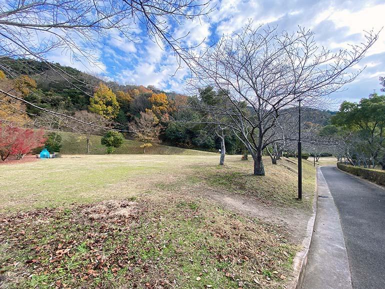 橘の丘総合公園 キャンプ場