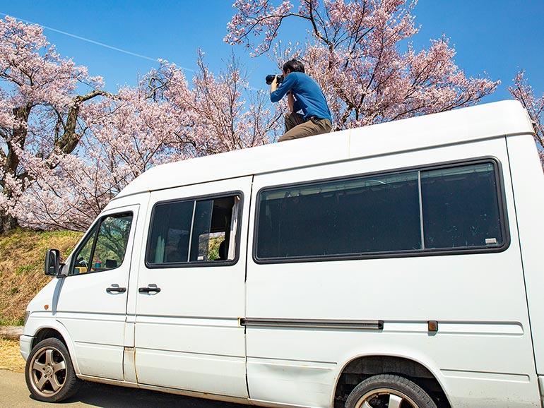 車の上で桜の撮影