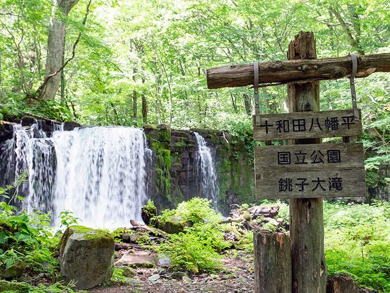 奥入瀬(おいらせ)渓流ハイキングコース