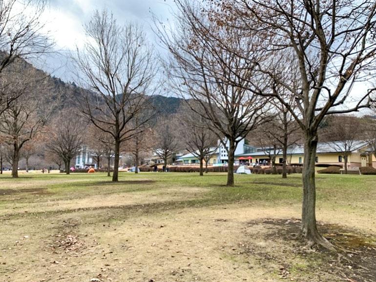 県立あいかわ公園の広場