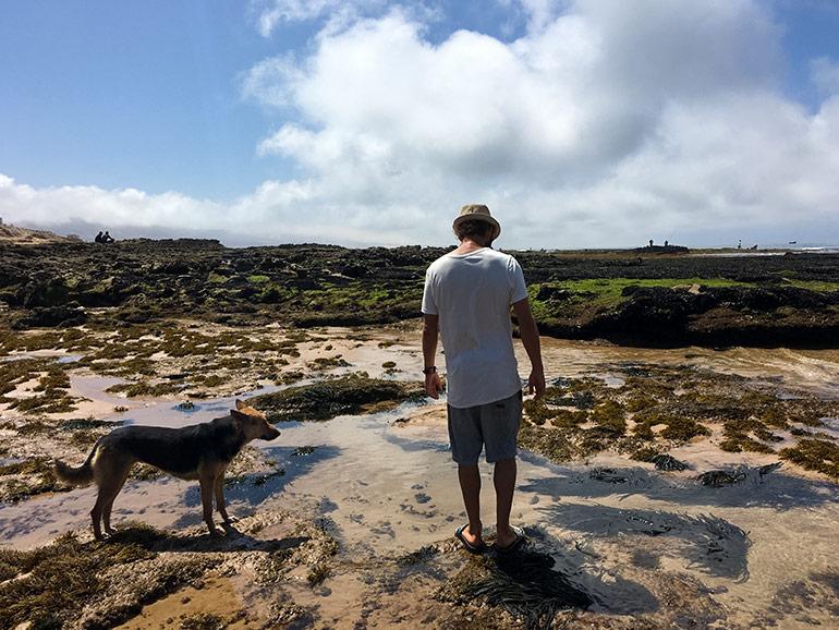 海辺に立っている男性と犬