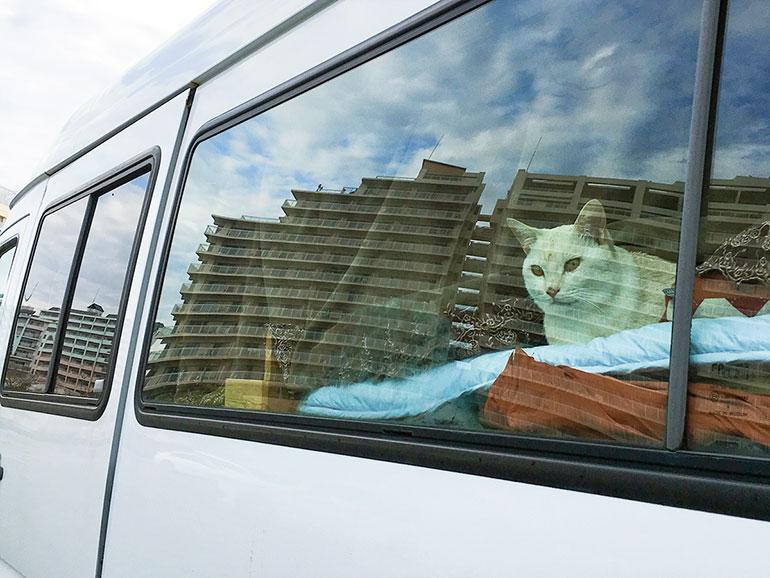 ベンツ・トランスポーター 窓