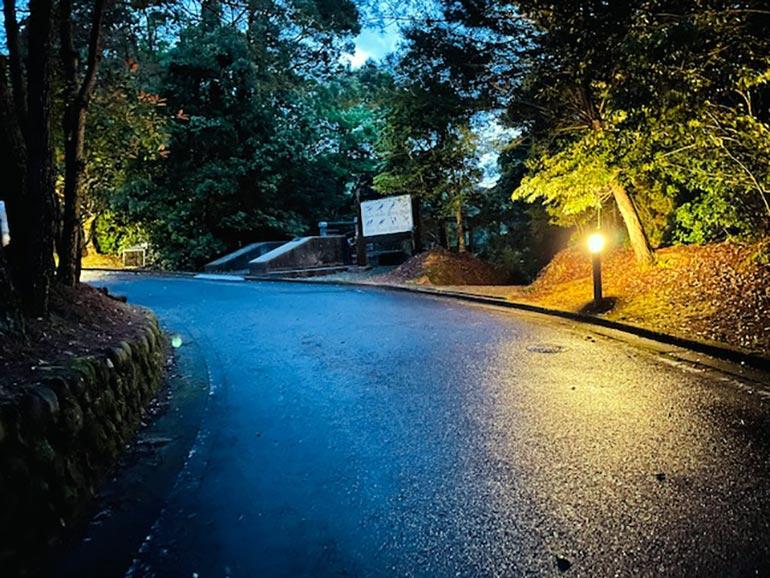 キャンプ場 道路